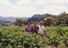 ジャカランダ農場