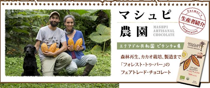 森林の再生からカカオの栽培、チョコレートの製造まで マシュピ農園の森林農法フェアトレード・オーガニックチョコレート 「フォレスト・トゥー・バー」