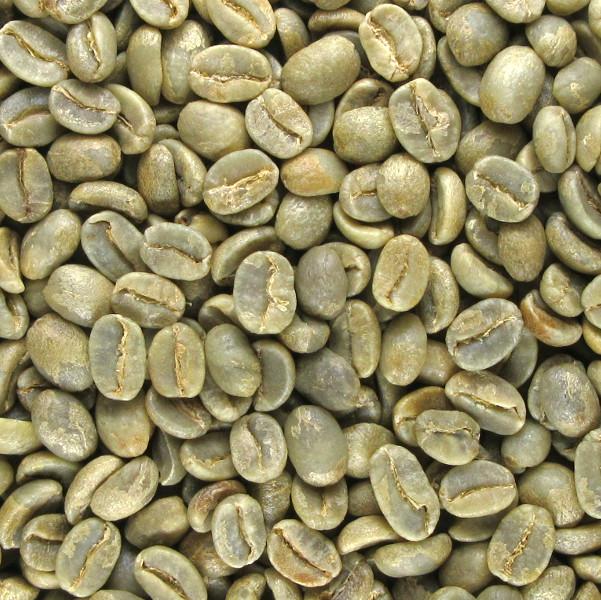 有機栽培コーヒー生豆 メキシコ産【Unecafe農協】