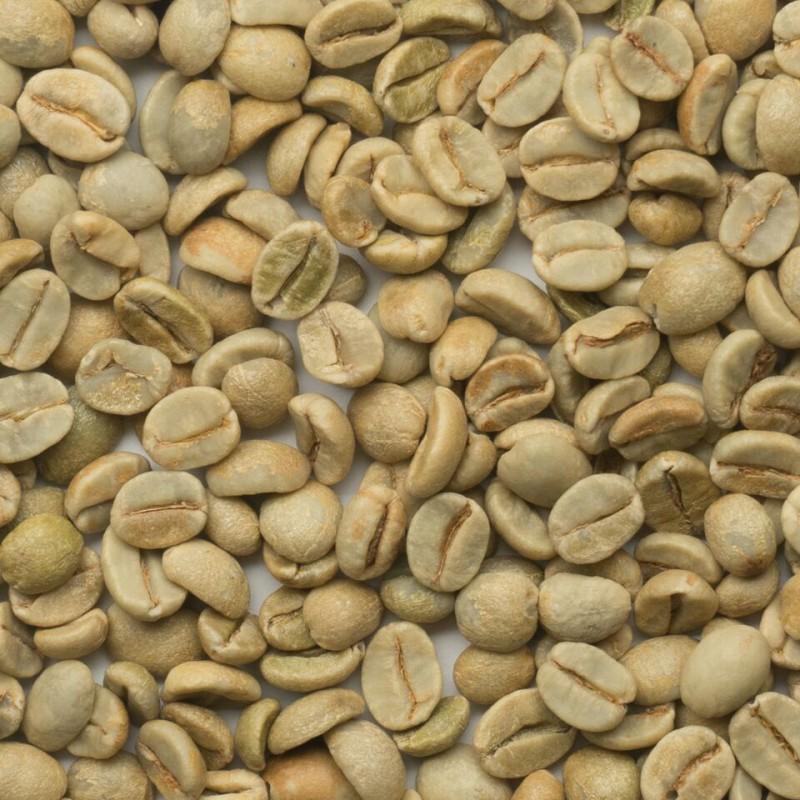 有機栽培コーヒー生豆 ブラジル産【マノエラ農場】