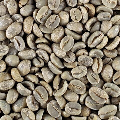 【限定販売】 無農薬栽培コーヒー生豆 ラオス