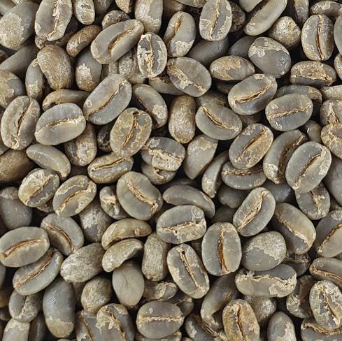 【限定販売】 無農薬栽培コーヒー生豆 パプアニューギニア