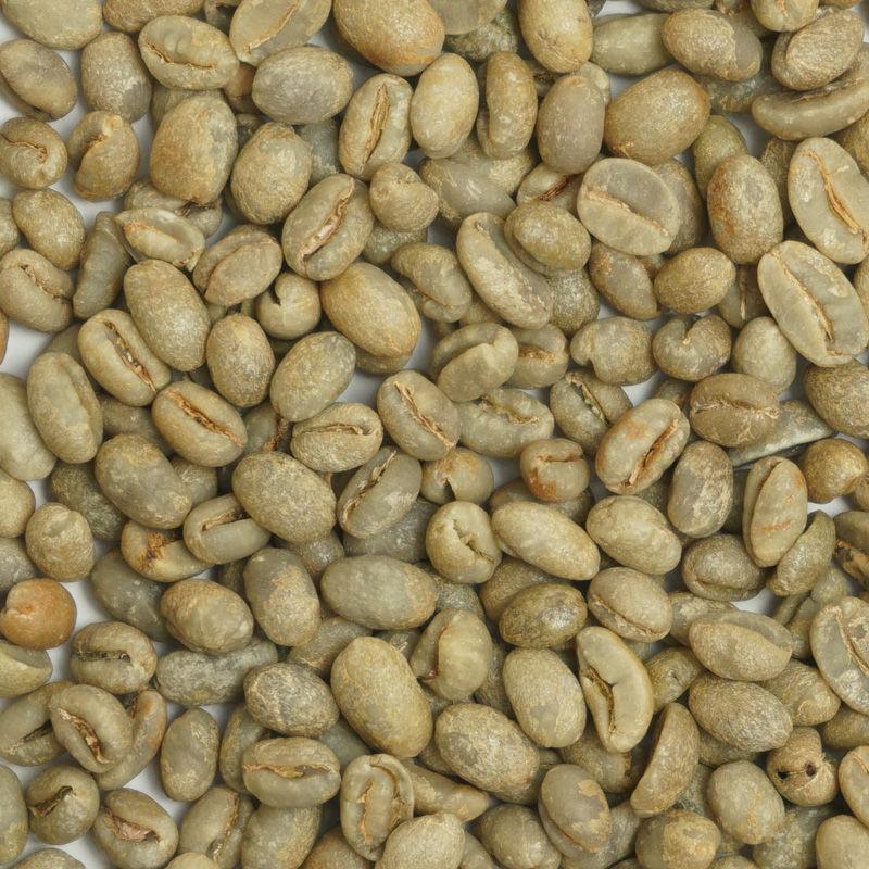 有機栽培コーヒー生豆 ブラジル産【ジャカランダ農場】(ピーベリー)