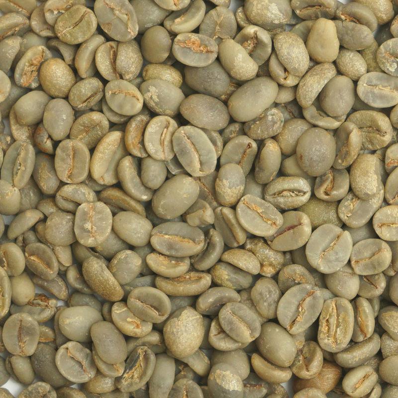 有機栽培コーヒー生豆 ブラジル産【サカレマ農園】