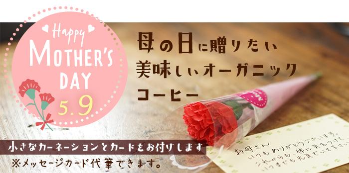 母の日に美味しいオーガニックコーヒーを贈りませんか?小さなカーネーションとメッセージカード付き(※メッセージ代筆できます)
