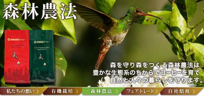 森林農法(=アグロ・フォレストリー)