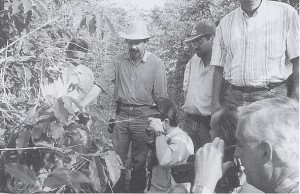 ジャカランダ農場での有機栽培を見学する人々