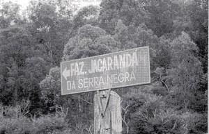 ジャカランダ農場の入り口