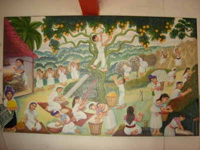 MEXI2010-10NO2 040