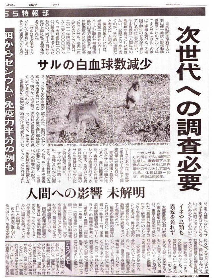 東京新聞:サルの白血球数減少 次世代への調査必要