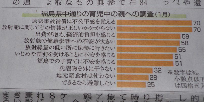 福島県中通りの育児中の親への調査(2015年1月)