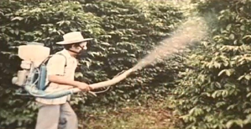 コーヒー園での農薬散布・メキシコ