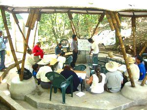 コーヒー畑での環境教育