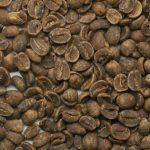 有機栽培コーヒー生豆 メキシコ産 カフェインレス 【トセパン協同組合】