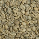 有機栽培コーヒー生豆 メキシコ産【トセパン協同組合】